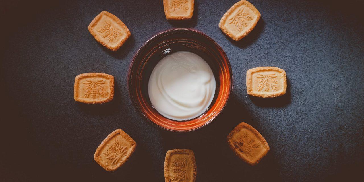 Comment faire du yaourt de chèvre : quelles sont les étapes a suivre ?